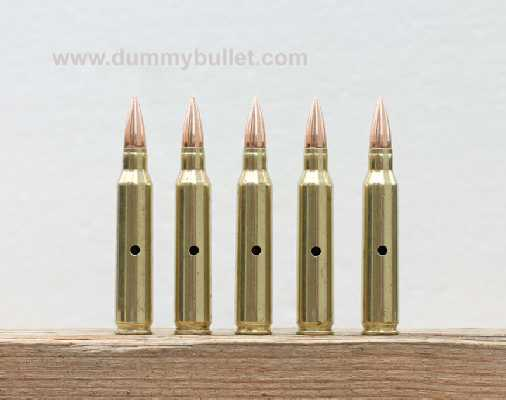 .223 inert training rounds