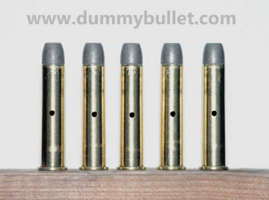 45-70 Government Dummy Rounds