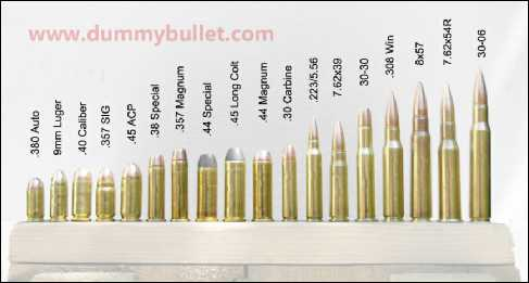 Display bullets 18 Different cartridges