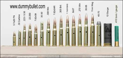 rifle caliber cartridge display assortment